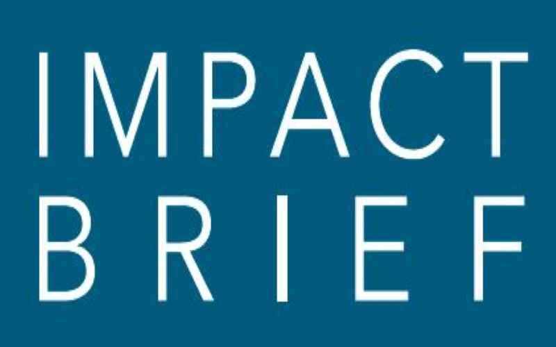 Impact Brief 2019 Article Image
